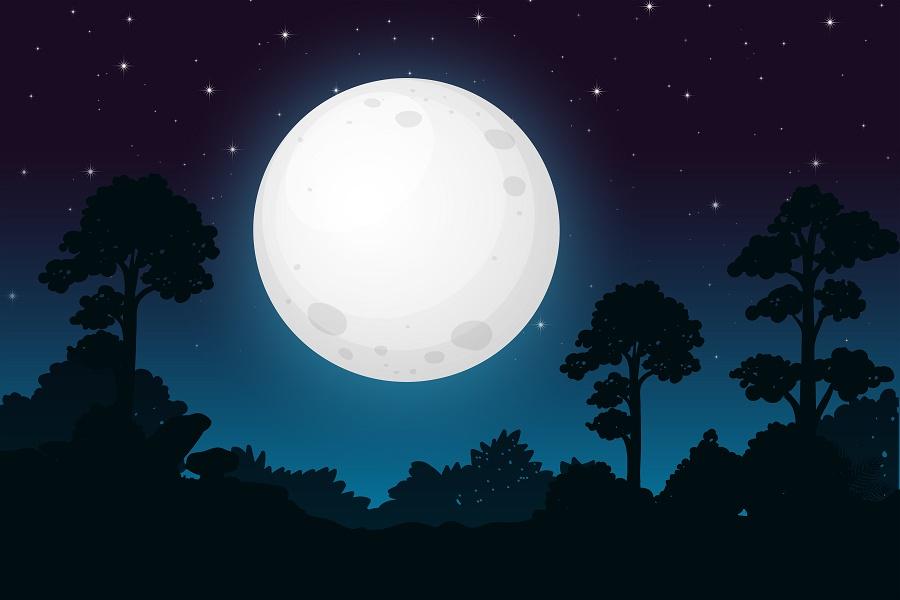 Polna luna - MičnaCvetlična